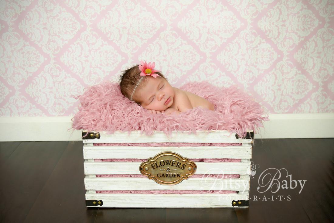 newborn photography, baby, pink Flokati rug, white crate