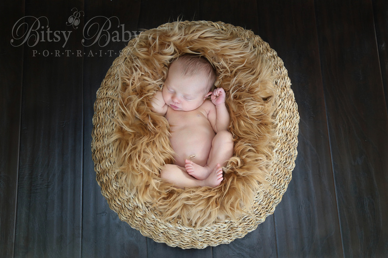 """Newborn Photographer"" ""Athens GA"" Baby in a basket with fur"
